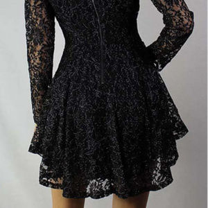 NWT Fit & Flare Lined Lace Dress